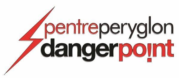 DP logo web
